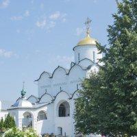 Покровский собор. Суздаль :: Николай