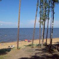 На Финском заливе :: alemigun
