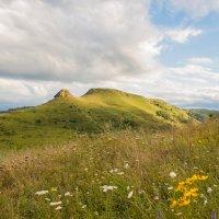 горы в цветах :: Евгений Khripp