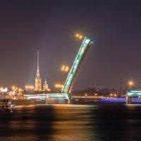 Литейный мост и Петропавловка ( варианты) :: Владимир Демчишин