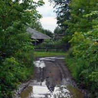 Деревенская дорога :: Борис Русаков