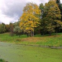 В старом парке Осень поселилась... :: ТАТЬЯНА (tatik)
