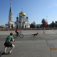 Друзья :: раиса Орловская