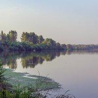 Утро на реке.... :: Юрий Стародубцев