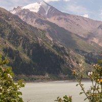 Большое Алма-Атинское озеро :: Андрей Кулаков