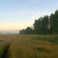 Туман. :: Андрей Русинов