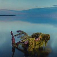 Baltic sea :: Олег Карсаков