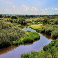 Память детства луговой речушкой... :: Лесо-Вед (Баранов)