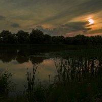 вечернее :: Алена Рыжова