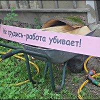 Не трудись ... :: Александр Иванов