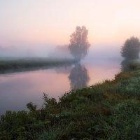 На утренней зорьке :: Сергей Шабуневич