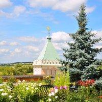 Вид из Оптиной. :: Виктор Евстратов