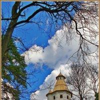 у монастырской стены :: Дмитрий Анцыферов
