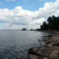 Финский залив :: Елена Каталина