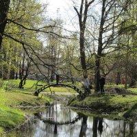 Весна в Ботаническом саду. :: Ирина