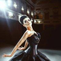 Черный лебедь :: Ольга Колбакова