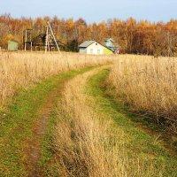 Осеннее поле :: Алексей Денисов