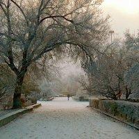 Предзимний пейзаж :: Сергей Босов