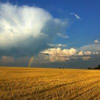 Отдыхающее поле :: Валерий Талашов