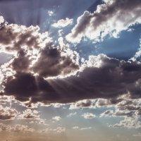 злые облака) :: Вероника Галтыхина