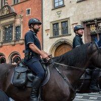 Я и мой конь :: Андрей Пашков
