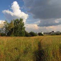 Вид на Москву со стороны пос. Абрамцево :: Андрей Лукьянов