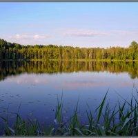 Озеро. :: Vadim WadimS67