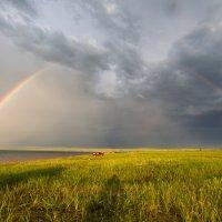 Catch the rainbow :: Дмитрий Шкредов