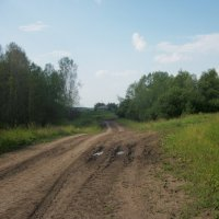 Вид на деревню с лесной дороги :: Анна Наумова