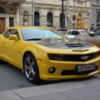 Chevrolet Camaro :: Владимир Рубцов