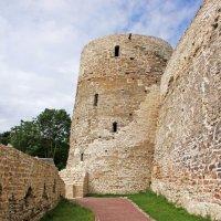 Изборск. Крепостные стены и башня :: Александр Николаев