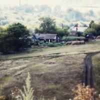 Вид с холма :: лиана алексеева