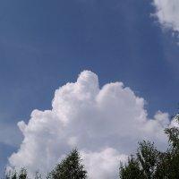 облачное настроение. :: tanti123
