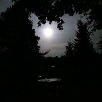 Свет в ночи... :: Владимир Гилясев