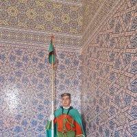 Марокканская гвардия :: Petr Popov