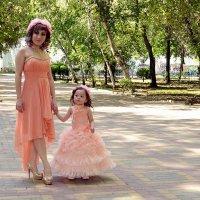 Мама с дочкою гуляют... :: Владимир Болдырев