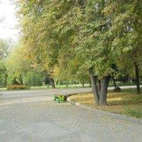 осень :: Мухиддин Шарипов