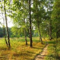 Один день августа - IMG_3879 :: Андрей Лукьянов