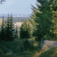Среди лесов и озер :: Валерий Талашов