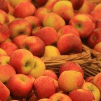 Пахнет яблоками Русь. :: юрий