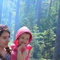 прогулка по лесу :: Ольга Аникиева