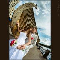 Свадебное фото Эллада и Аркадий :: Сергей Азаренко