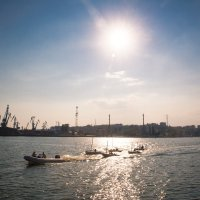 Таганрогский залив :: Алла Панасенко