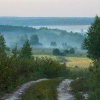 Деревенское утро... :: Дмитрий Гортинский