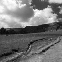 Путь :: Анастасия Махова