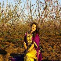 Старшая дочь, фотосессия на персиковой плантации, Марокко :: Светлана marokkanka