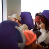 "неожиданный пассажир ""Ласточки"" :: Mariposa Rara"