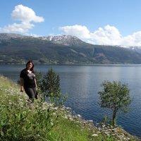 Норвежский пейзаж :: Эльф ```````