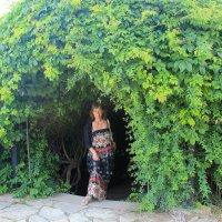 Зеленый туннель :: Натали Акшинцева