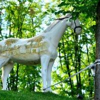 Конь в кустах :: Ксения Базарова